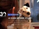 Sommaire émission 30 Millions d'Amis 15/12/2012