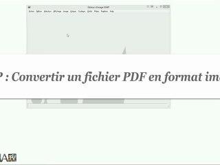 Comment convertir un fichier PDF en fichier image avec GIMP ?