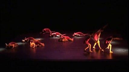 Danse contemporaine - Ballade en couleur