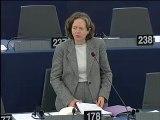 Intervention plénière-Introduction de restrictions d'exploitation liées au bruit dans les aéroports de l'Union - Services d'assistance en escale dans les aéroports de l'Union - Attribution des créneaux horaires dans les aéroports de l'Union Européenne