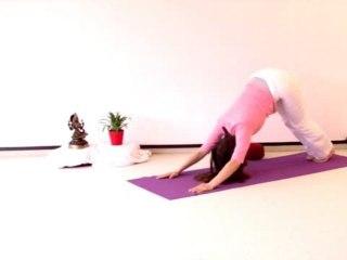 Yoga Vidya Anfängerkurs Woche 10 Teil 3