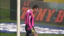 But Michel BASTOS (83ème) - Olympique Lyonnais - AS Nancy-Lorraine (1-1) - saison 2012/2013
