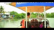 Parc national Guadeloupe - Espaces naturels 03 - Education à l'environnement
