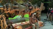 The Guilt Trip & The Hobbit Movie Reviews - Breakin' It Down
