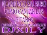 FLAMENCO SALSERO COMO CANTAN LOS GITANOS MIXX DJXILY