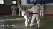 Stage de Uechi-Ryû et de Ju-Jitsu - décembre 2012 - Aulnay-sous-bois - France