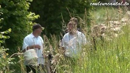 Transhumance Lot-Cantal 2012 version intégrale partie 1