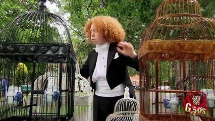 Gag  - - - Concerto pour oiseaux - - -