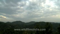 2236.Monsoon clouds in the mountains of Kamakhya.mov