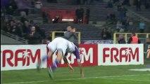 Toulouse FC (TFC) - FC Sochaux-Montbéliard (FCSM) Le résumé du match (19ème journée) - saison 2012/2013