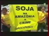 Déforestation de l'Amazonie pour la Culture du Soja 3/3