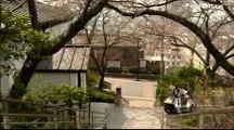 Film4vn.us-NHHP2-33_chunk_2