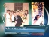 Lo que usted vio 2012: Bodas y más bodas entre los famosos