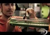 Gabriele Salvatores si dà alla pubblicità: spot per McDonald's. Il regista e la campagna di assunzione di 3mila nuovi lavoratori