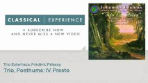 Johannes Brahms : Trio - ClassicalExperience
