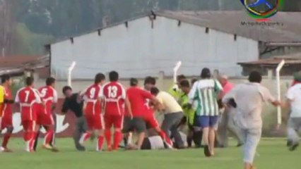 Referee attacked in football brawl