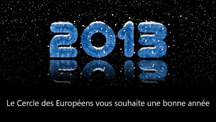 2013: année européenne de la citoyenneté !