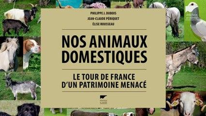 Nos animaux domestiques - Philippe Dubois