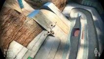 Vidéos des internautes - TueurDeCoiffeur - Skate 2/Skate 3 montage