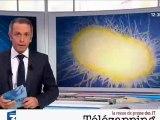 Télézapping : La bactérie E.coli s'invite à Bordeaux