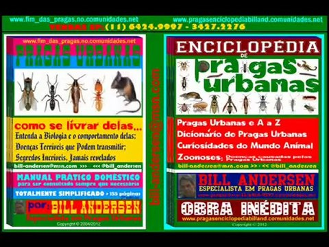 TREINAMENTOS Pragas Urbanas SP 11 6424 9997 BILL ANDERSEN
