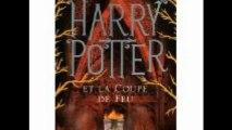 Critique de Livres Jeunesse : Harry Potter (Valentine STEPHEN)