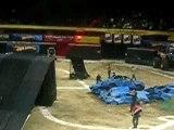 freestyle motocross  ( backflip )