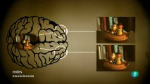 Cerebro e intuicion: Elsa Punset