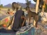 Mali Contamination à l'Uranium, Pollution et drones, découvrez les vrais terroristes