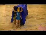 Retour sur le GALA 2013 - HIRONDELLES de VILLEFRANCHE - Gymnastique Artistique Féminine FSCF