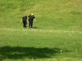 Policiers frappent un homme à terre