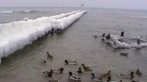 Mielno-relaks nad morzem