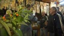 Bannalec - La taverne des Bretons à Saint-Jacques - TF1 14.01.2013