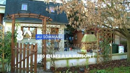 Sommaire émission 30 Millions d'Amis 9/2/2013