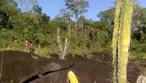 Amazonia, Última llamada (02) Aislados