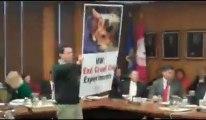 """Les militants PETA accusent une université américaine de """"torturer"""" des chats"""