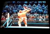 Sin Cara & Rey Mysterio vs WWE Tag Team Champions Daniel Bryan & Kane