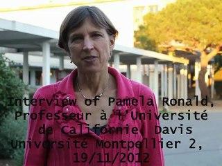 Interview of Pamela Ronald, Professor at the University of California-Davis,19 november 2012, Montpellier, France
