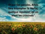 Belle récitation du Coran, Sourate Jonas, v. 74 82, Utaybi