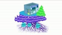Que sont les fonds propres d'une banque ? par Crédit Agricole