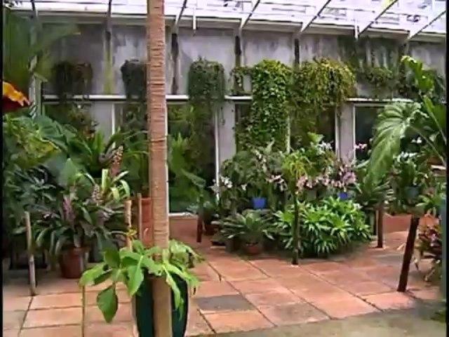 The Best of Eye on Gardening Part 2