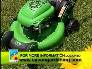 Lawn Care Part 3