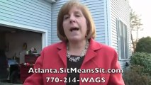 Atlanta Board & Train - Sit Means Sit Dog Obedience - Diamon