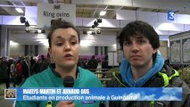 SIA 2013 : Maëlys et Arnaud futurs éleveurs ovins