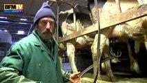 Eleveur laitier : augmenter le litre de quelques centimes pour sauver les exploitations - 25/02