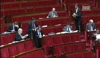 Francois de Mazieres - Article 14 -  Projet de loi relatif à l'élection des conseillers departementaux des conseillers municipaux et des délégués communautaires, et modification du calendrier électoral