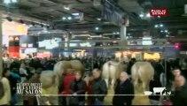 PATRICE DREVET : DE LA FERME AU SALON Des vaches pas maigres...