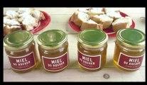 Cenon cultive son miel au marché