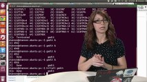 Linux Terminal 101: Controlling Processes - HakTip