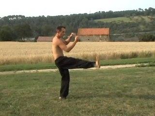 F05 Forme YANG rapide en 92 postures Nicolas Garnon 2006